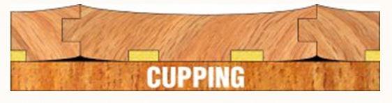 Hardwood floor repair atlanta services northside floors for Hardwood floors cupping