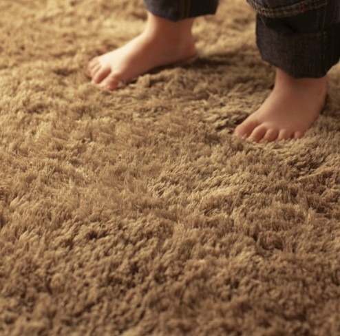 plush carpets materials