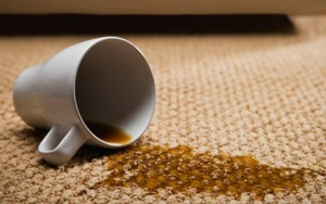 nylon carpet stain removal