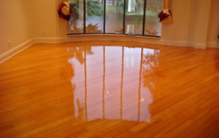 hardwood floor shining